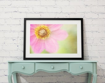 Soft Dahlia Pink Flower Photo Nature Photography Girl's Room Yellow Green Dreamy Textured Photo Print Wall Art Print