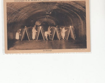 Champagne G.H. Mumm &C. Lee Remuage Working In The Caves