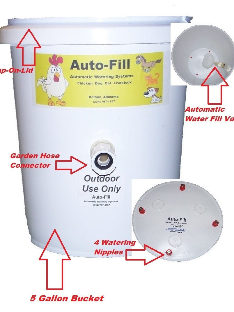 Automatic Chicken Waterer Feeder 4 Nipple 5 By