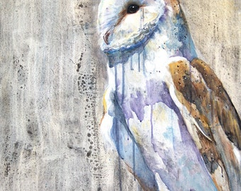 Barn Owl Giclee Print
