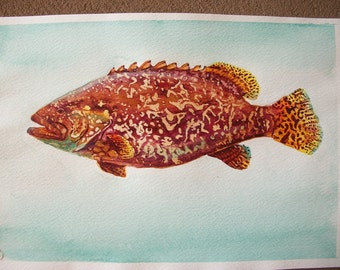Fish Sorter, watercolour, original painting/Grouper fish, watercolor, original painting