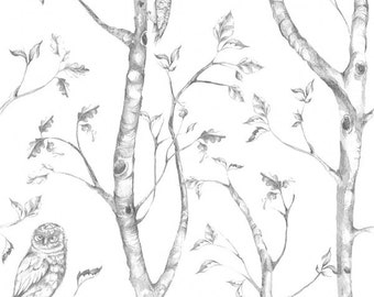 Peel and Stick Birds in the Woods Wallpaper NU1412 - Sold by the Yard