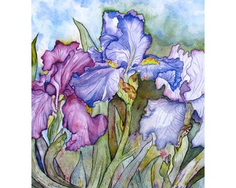 Purple Iris Watercolor Painting Signed Prints from Original Flower Artwork, Small Print