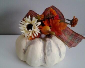 Pumpkin for Fall
