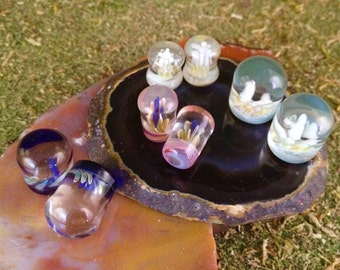 Custom made Glass Implosion Plugs