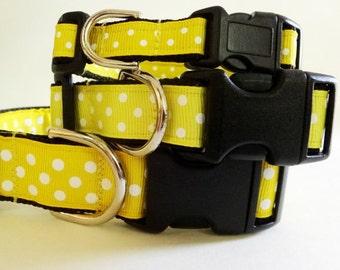 Adjustable Dog Collar-Girl Dog Collar - Yellow Polka Dot Dog Collar - Medium or Large Dog Collar - Small Dog Collar - Puppy Collar