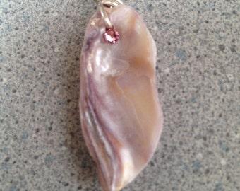 Pinkish shell