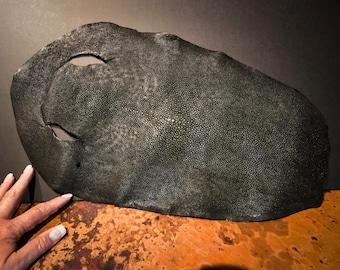 Beautiful Polished Black Shagreen Ray Skin or Hide