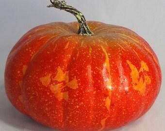 240MM Fall Pumpkin (9.4 Inches)