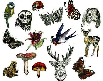 WOODLAND TEMPORARY TATTOO - hand illustrated original designs deer, swallow, butterfly, mushroom, rabbit, owl, bluebird, ladybird, and more