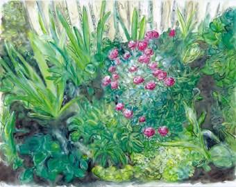 Thelma's Garden