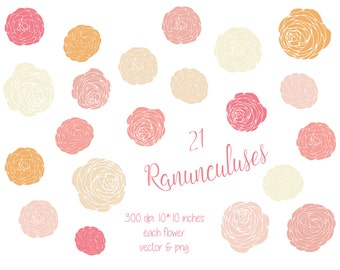 21 Ranunculus Flower Clip Art, Hand Drawn Modern Floral Blooms, vector and png, Clip Art, ClipArt, Flower Digital Graphics, Peony
