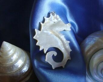 """Neptune's world"" - Seahorse"