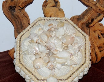 White and Cream Colored Sea Shell Encrusted Vintage Jewelry Box