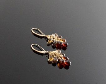 Tundra Sapphire Earrings #E107