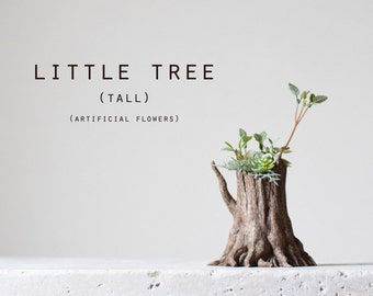 little tree (tall)