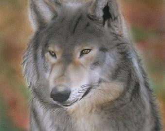 Wild wolf airbrush