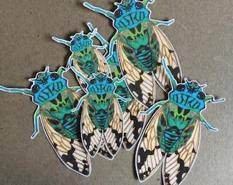cicada sticker - one vinyl sticker