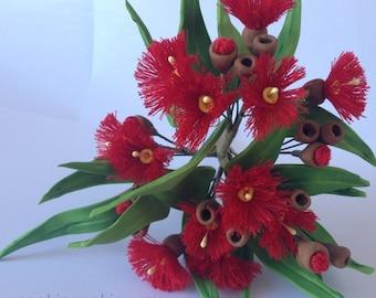 edible plants native to australia pamphlet pdf