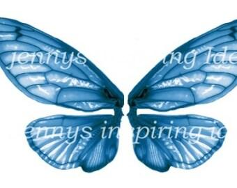 Blue Cicada Wings