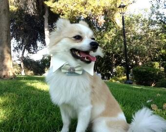Dog Collar Wedding Dog Collar Bow Dog Bows Dog Wedding Dog Wedding Attire Dog Wedding White Wedding Dog Best Man Wedding