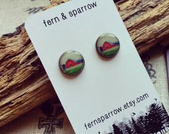 Little Red Barn resin stud earrings