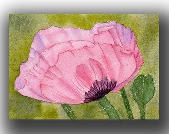 ACEO watercolor PINK poppy original painting SFA miniature flower macro dollhouse mini
