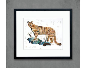 Mountain Lion on Rocks Art Print