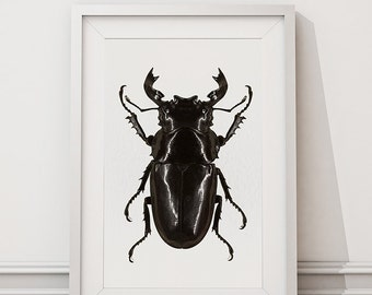 Beetle - Home Decor Fine Art Print  - by FlyWithMe