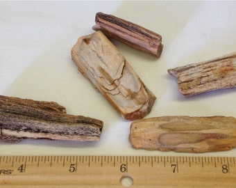 Petrified Wood Lot A9 - For Wire Wrapping - Pendant - Jewelry Supply  - Craft Supply - Earthy -