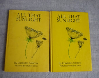 All That Sunlight,  Charlotte Zolotow, illustrations by Walter Stein, Harper and Row, 1967, not library copy