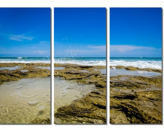 Washington Oaks Gardens State Park Beach Canvas Triptych, 3 Panel Fine Art, LARGE, Ready to Hang