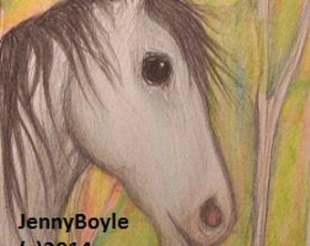 Arabian horse aceo art print magnet
