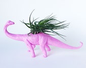 Pink Dinosaur Planter with Air Plant Room Decor, College Dorm Ornament, Plants and Edibles, Pink Plant Pot