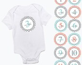 baby monthly stickers chevron pattern coral aqua and grey girls or boy zig zag month baby growth milestone newborn baby shower photo prop