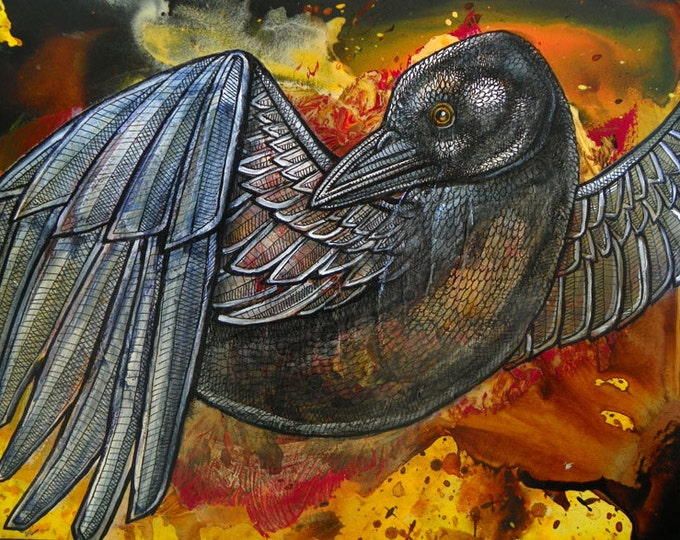Flying Crow / Raven Art Print by Lynnette Shelley
