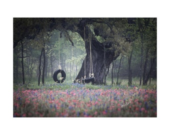 Spring Swing Fine Art Photography Texas wildflower ancient oak tree tire swings childhood dream nostalgic romantic large wall art soft green