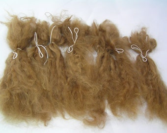 "Suri Alpaca Locks, 10""+ Brown Long Locks, Washed and Combed Locks, First Shearing Fine Locks, Doll Hair"