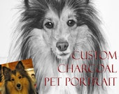 Pet Portraits Custom Personalized Charcoal Drawing of your Dog