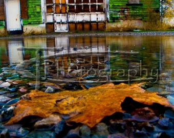 Old Green Barn, barn puddle print, leaf puddle, barn reflection, old barn photo, photography, puddle reflections, leaf, barn, puddle, rainy