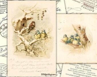 winter - vintage postcard scan christmas birds digital image printable download jpg handwriting script fabric transfer tag label decoupage