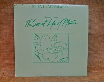 Stevie Wonder Vinyl Etsy
