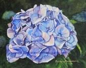 Hydrangea Art Print, Blue Flower Art, Hydrangea Painting, Hydrangea Wall Art, Garden Flower Art, Watercolor Hydrangea, Floral Art Gift,