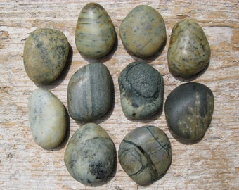 Natural BEACH Stone Cabinet Knobs RAINFOREST Stone Drawer Pulls