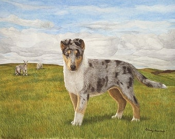 Little Girl Blue, Smooth Collie giclee print by Cindy Alvarado