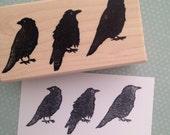 Three Ravens Rubber Stamp