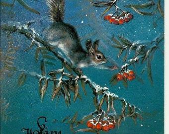 Squirrel, Rowan, Vintage  Russian Postcard, Happy New Year, Christmas print 1985 unused