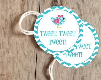 Instant Download - 12 Printable Gift, Favor Tags - Tweet Bird - Aqua Chevron and Lime Green and Pink Polka Dots