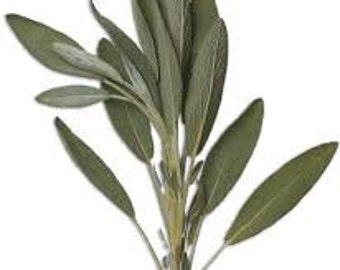 Crystallized Organic Greens for Cake Decorating, Sage, Rosemary, Thyme Sprigs