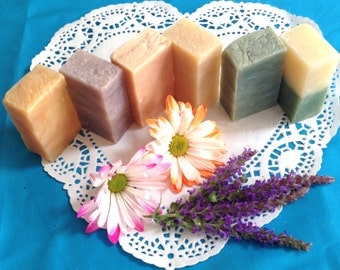 Soap 6-Pack: Our Best-Selling Soaps with Savings You'll Love! by Ostara Organics Ltd